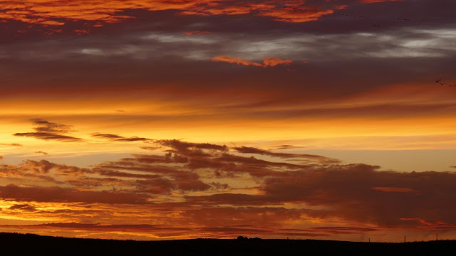 Estevan, Saskatchewan, landscape, sunset