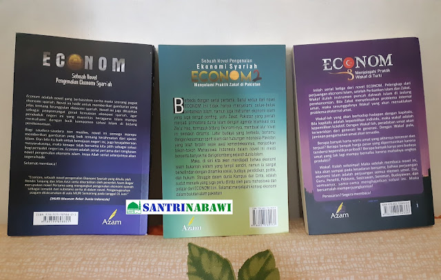 Buku Econom: Sebuah Novel Pengenalan Ekonomi Syari'ah - Hendri Tanjung & Irfan Azizi