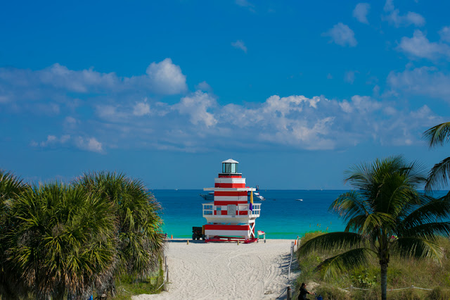 Sea, Palm Trees, lifeguard post at Miami Beach