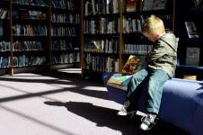 Metamora Herald child books library