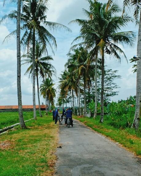 desa wisata malangan yogyakarta