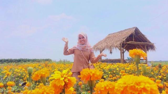 Taman Bunga Ponggok Banjarsari Kecamatan Bandar Kedungmulyo