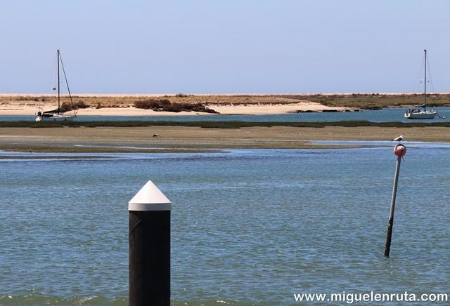 Ría-Formosa-islas, dunas