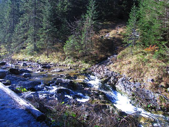 Potok Strążyski.
