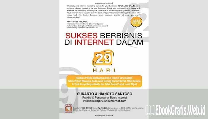 Ebook E-course Sukses Berbisnis Internet dalam  29 Hari