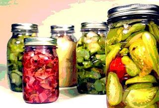 alimentos-fermentados