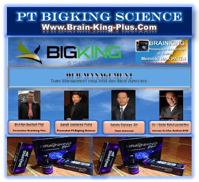 Brainking Plus