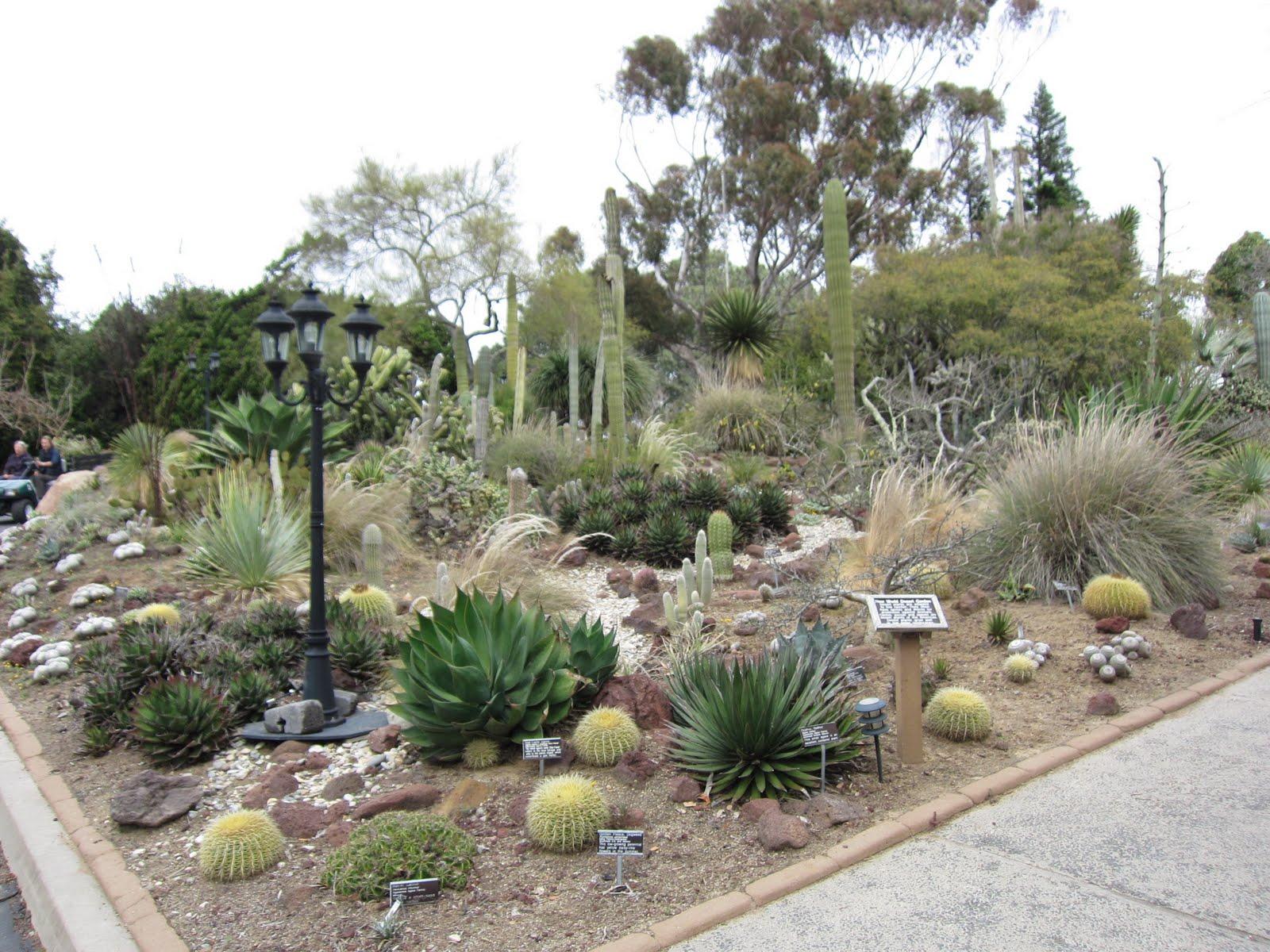 Where Is Darren Now San Diego Botanic Garden