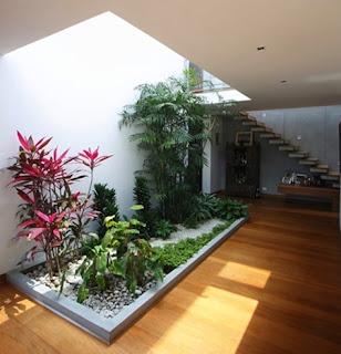 TUKANG TAMAN DI JAKARTA SELATAN | tepat penempatan taman indoor atau taman out door