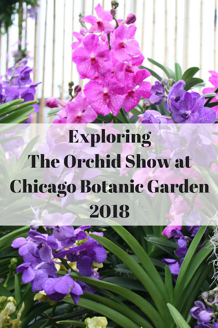 Exploring  The Orchid Show at Chicago Botanic Garden 2018