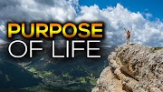 Purpose of Life: What Is The Purpose Of Your Life 2019?