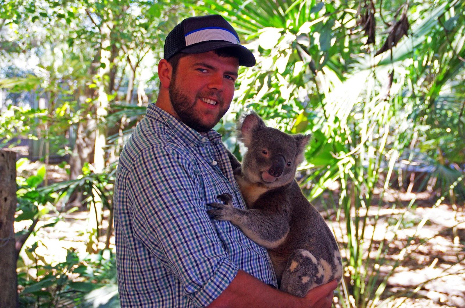 Dan with a Koala at Lone Pine Koala Sanctuary