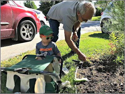 June 22, 2018 Watching our little Saskatchewan farmer help Uncle Paul as he waits to leave.