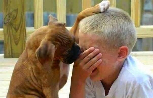 distruggiamo la mente ecco come distruggiamo la mente dei nostri bambini Ecco come distruggiamo la mente dei nostri bambini 1610054 745619832123753 1041466579 n