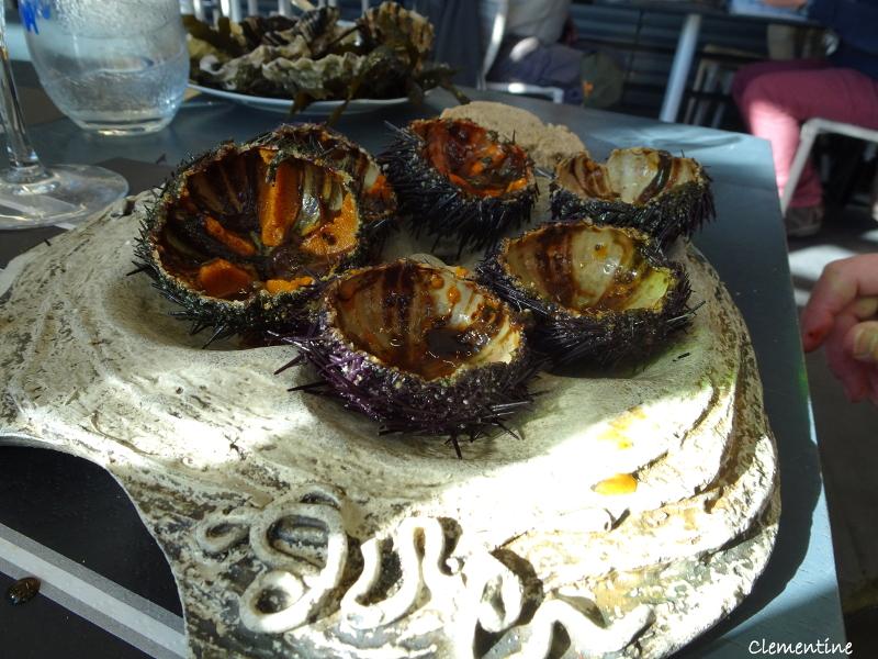 Le blog de clementine restaurant la c te catalane port vendres - Restaurant le france port vendres ...