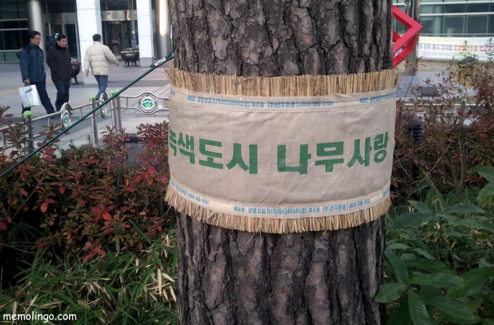 Ciudad verde que ama a los árboles, en coreano