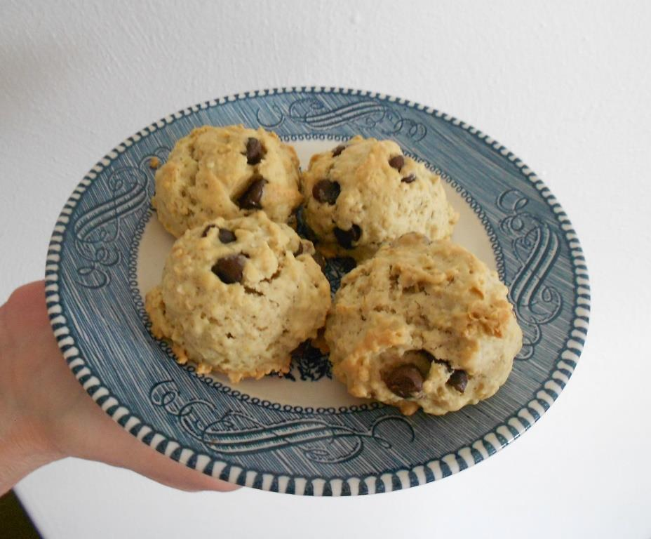 Chocolate-Oat-Button-Cookies on Plate