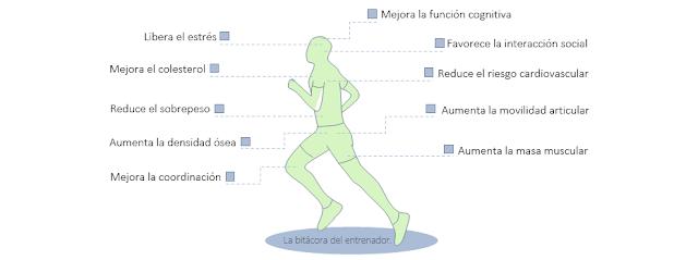 Beneficios y efectos del ejercicio físico sobre la salud