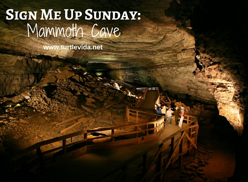 The Mammoth Cave in KY is the world's longest cave system. | turtlevida.net
