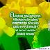 Obrazki wielkanocne na FB dla rodziny i znajomych / Kartki i życzenia na Wielkanoc dla przyjaciół