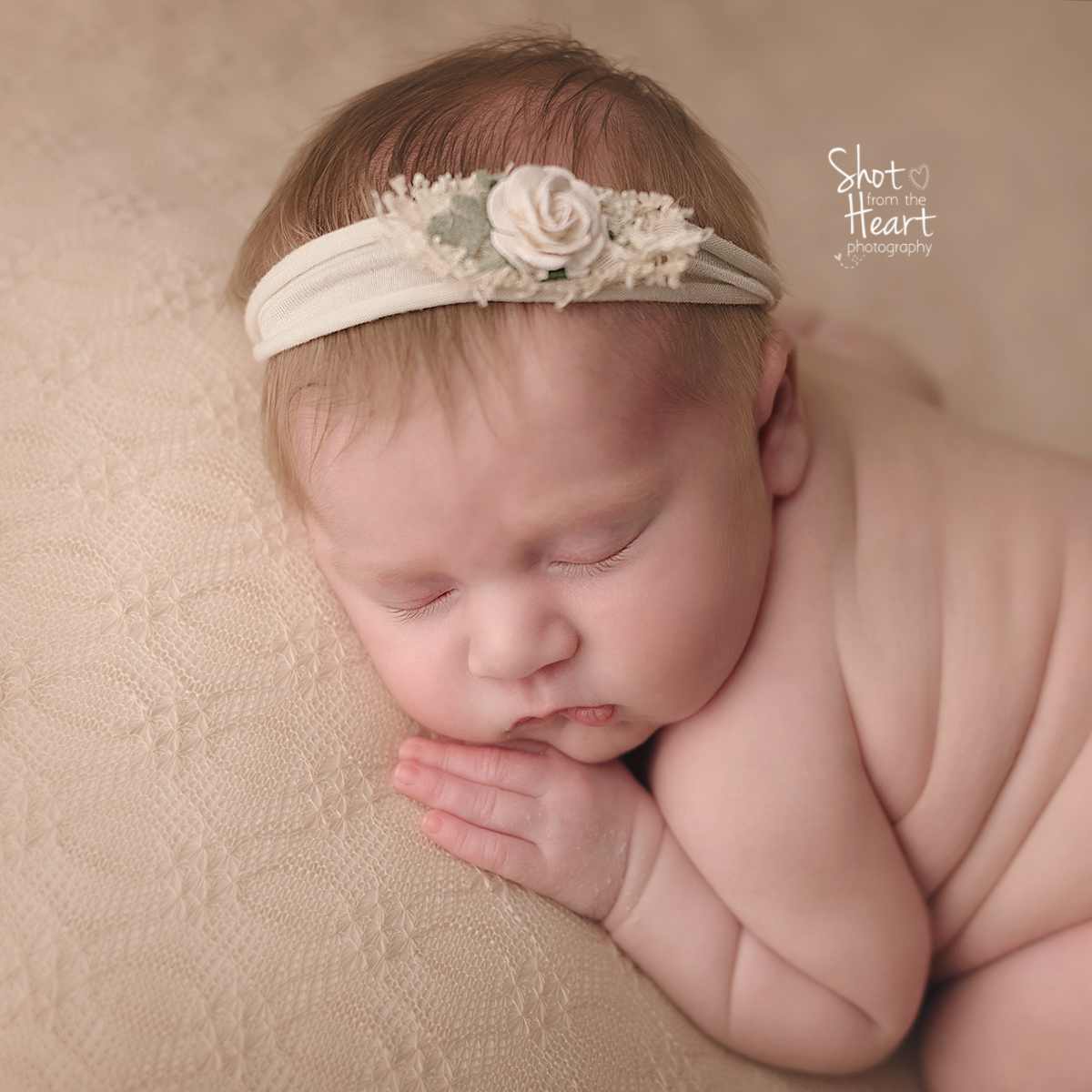 Newborn Photography Questions