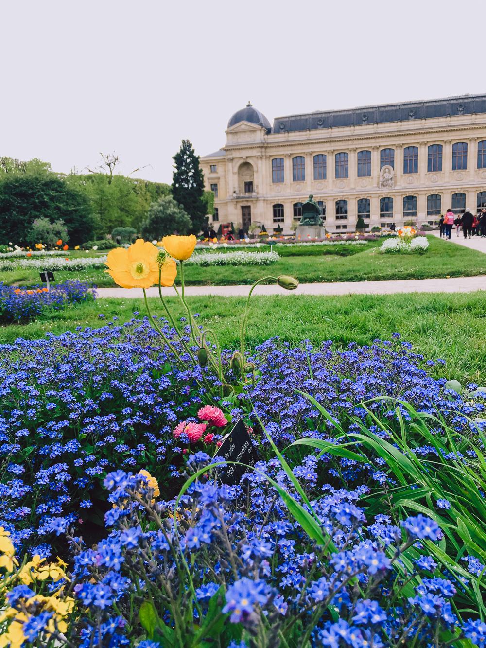 Jardin des Plantes Paris journographie travel blog