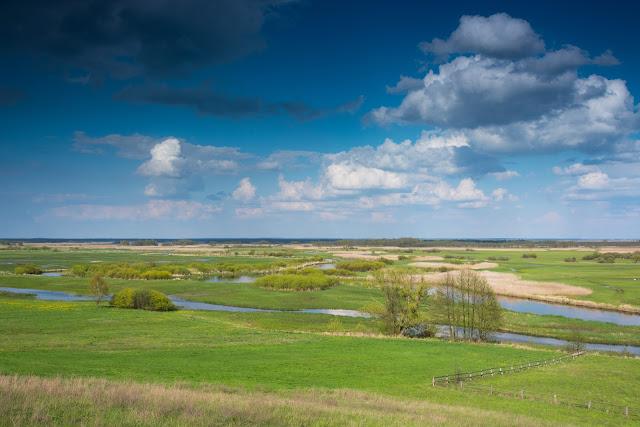 rzeka Biebrza, kajaki, spływ kajakowy, podlasie, przyroda, ptaki
