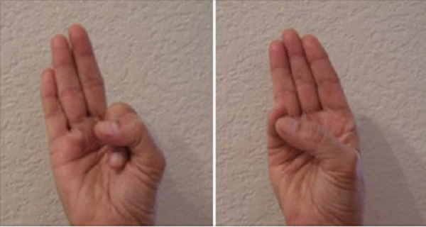 various mudras by hand