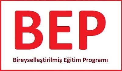 2017-2018 5. Sınıf Sosyal Bilgiler BEP planları