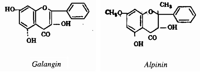 Thành phần hóa học Riềng - Alpinia officinarum - Nguyên liệu làm thuốc Chữa Bệnh Tiêu Hóa