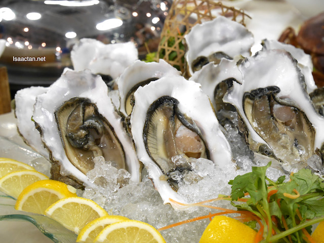 Raw Canadian Oysters to kick start our meal