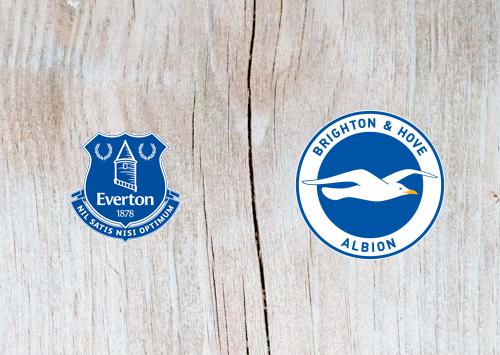 Everton vs Brighton - Highlights 03 November 2018