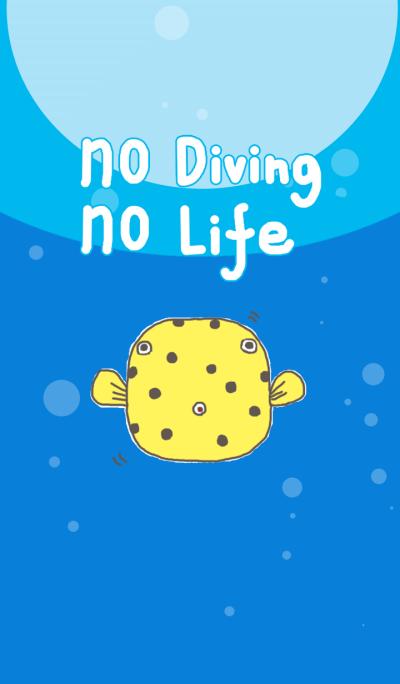 No diving no life