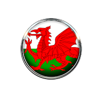 Welsh dragon button divider