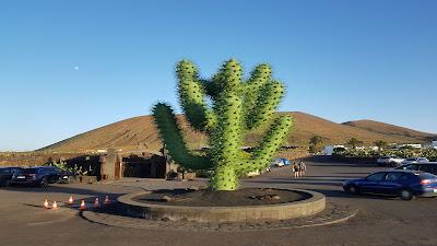 Cactus statua