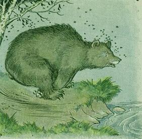قصص اطفال قصيرة قبل النوم قصة الدب وخلية النحل