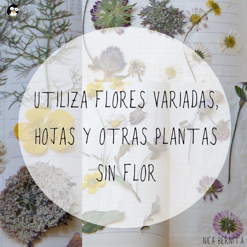 UTILIZA FLORES VARIADAS, HOJAS Y OTRAS PLANTAS SIN FLOR