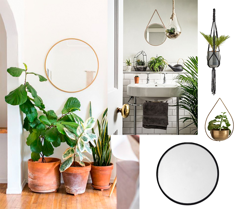 spring-home-refresh-round-mirror-houseplants