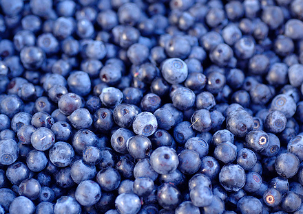 Blueberries  for Urinary Tract Infection (UTI)