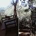 Floresta da Tijuca e Mirante da Cascatinha