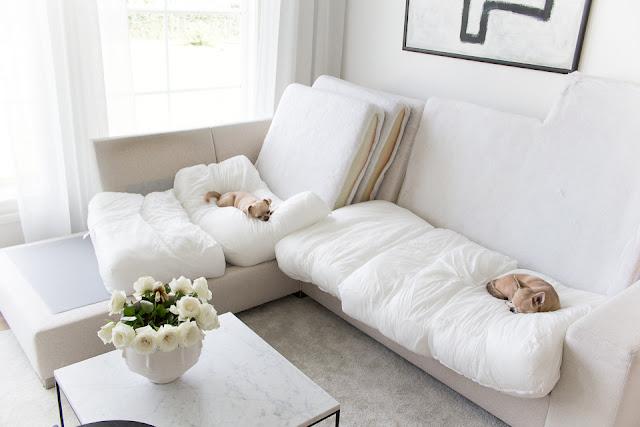 olohuoneen sisustus, marmori sohvapöytä, chihuahua, villa h