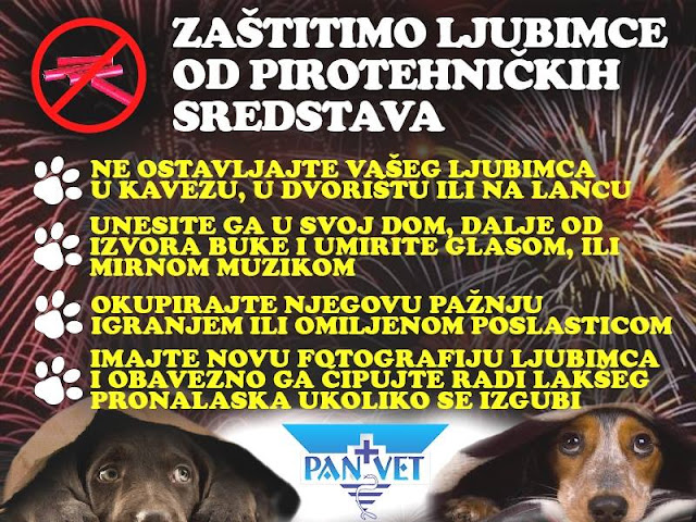 Panvet Subotica - kako zaštiti ljubimca od buke petardi