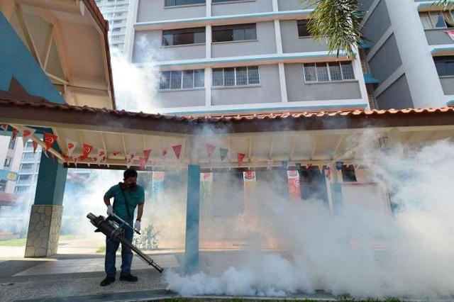 Jangkitan Virus Zika Di Singapura Mencecah 242 Kes