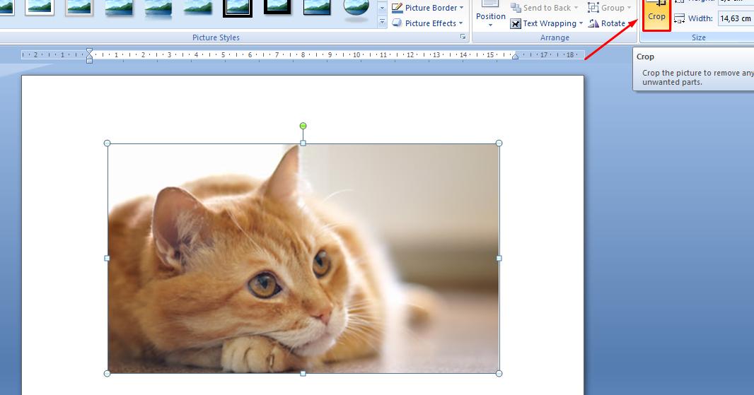 Cara Memotong (Crop) Gambar di MS Word 2007 - Kimtuck.com