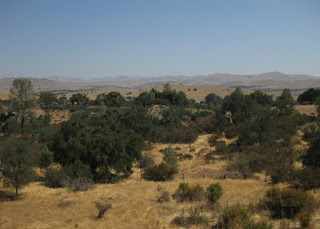 View of golden, oak-studded hills from Cienega Road, San Benito County, California