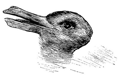 What do you see? A Rabbit or Duck?