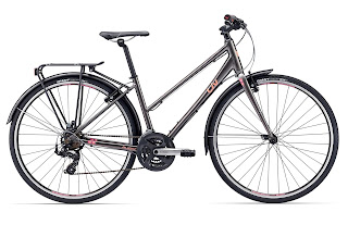 Stolen Bicycle - Liv Alight 3