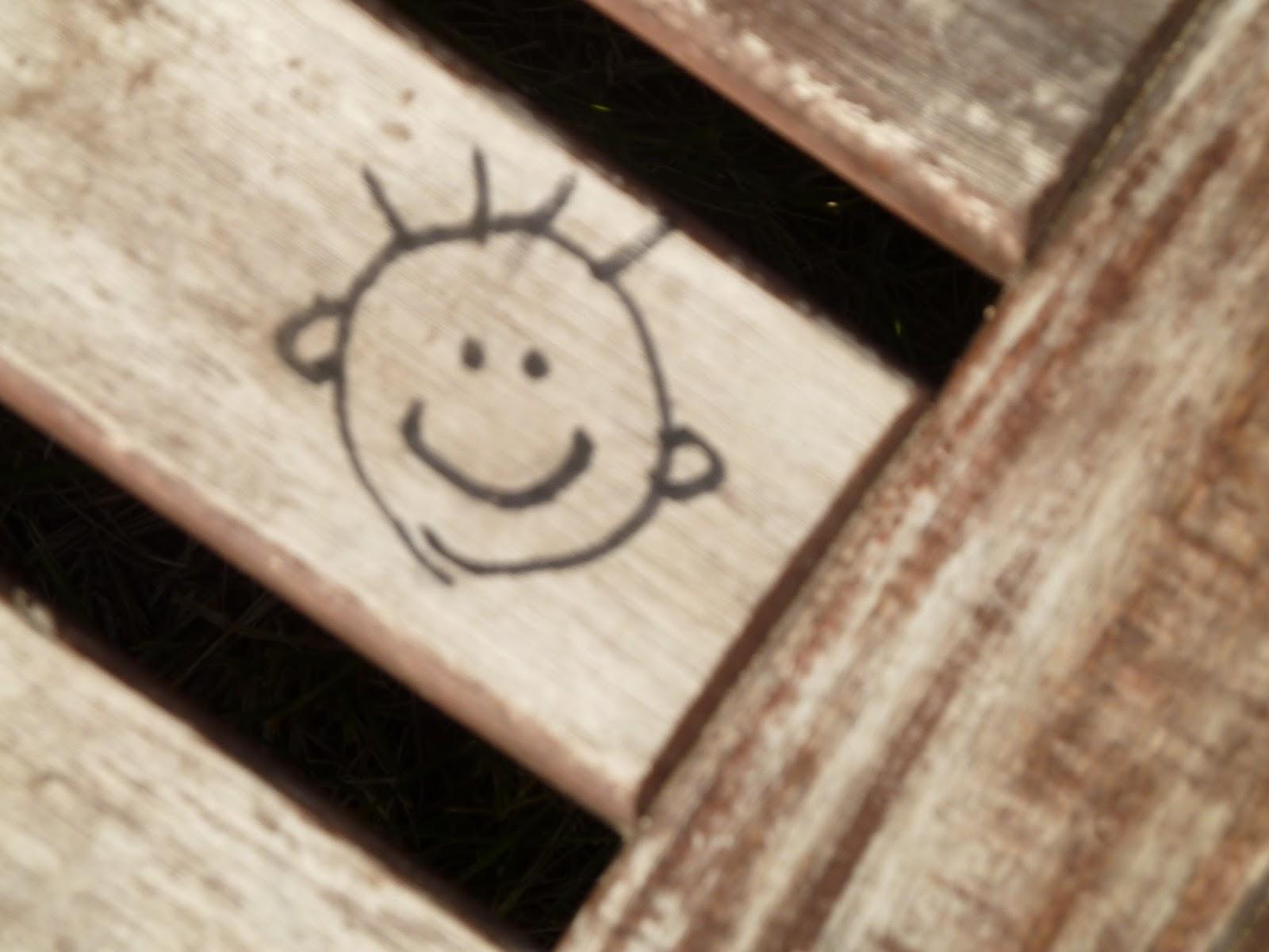Anschauen und freuen: Anke Domscheit-Berg wagt den großen Wurf