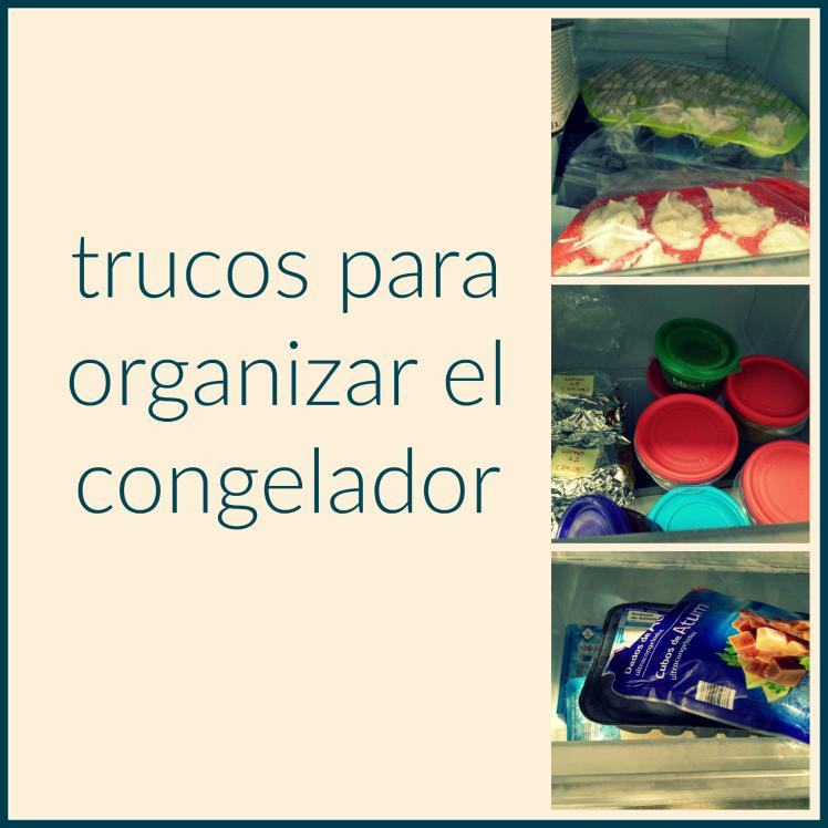 trucos-para-organizar-el-congelador