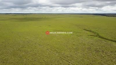 Padang Rumput Sabana nan luas di Bomberay Fakfak Papua Barat